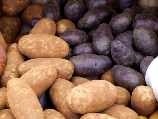 potatos rich in iodine and good for hypothyroidism
