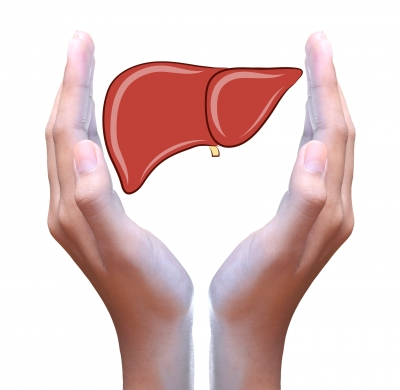 Natural Treatment for Hypothyroidism - liver support